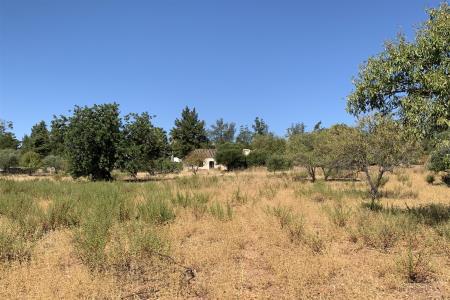 Terreno com ruina, Tavira, Tavira