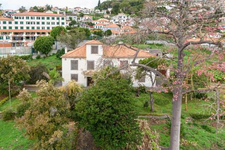 Quinta, Imaculado Coração de Maria, Funchal